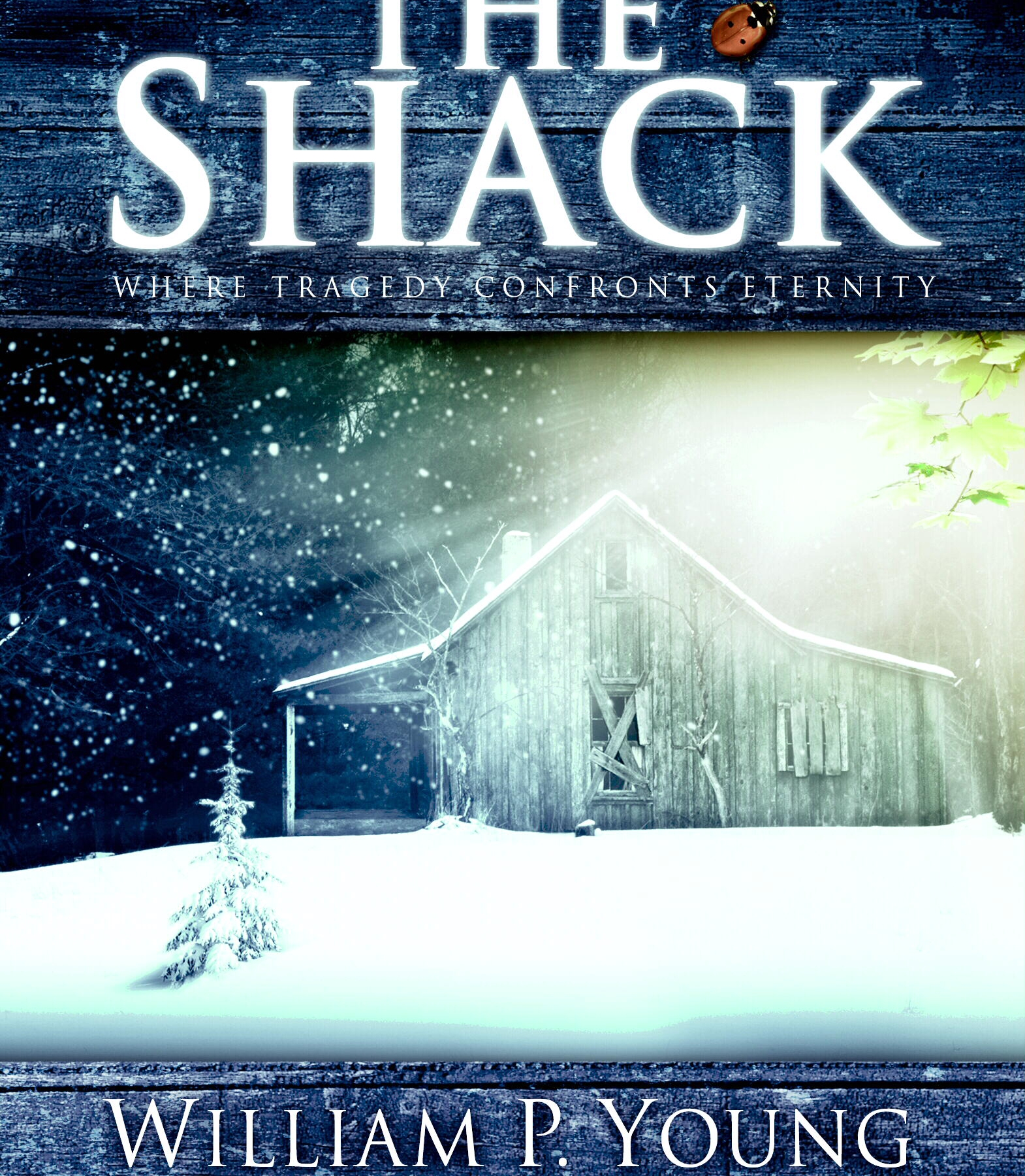 Book cover of 'The Shack' by William Paul Young