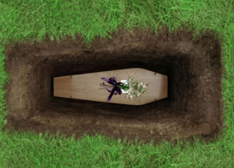 A wooden coffin in a dug grave surrounded by grass (shot from above)
