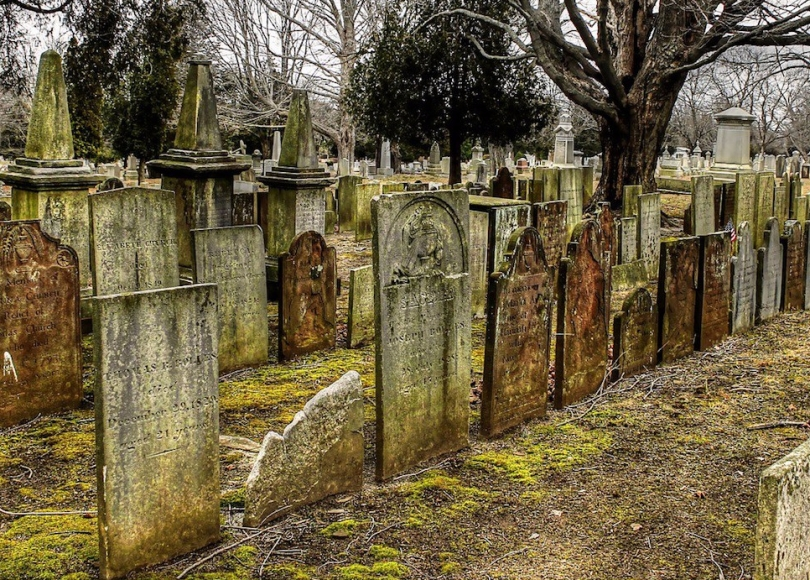 Rows of gravestones in a cemetery