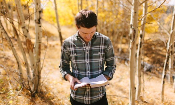 A man in the woods standing and reading a Bible