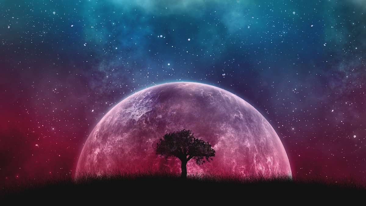 A tree in the foreground with a planet and starry night sky in the background