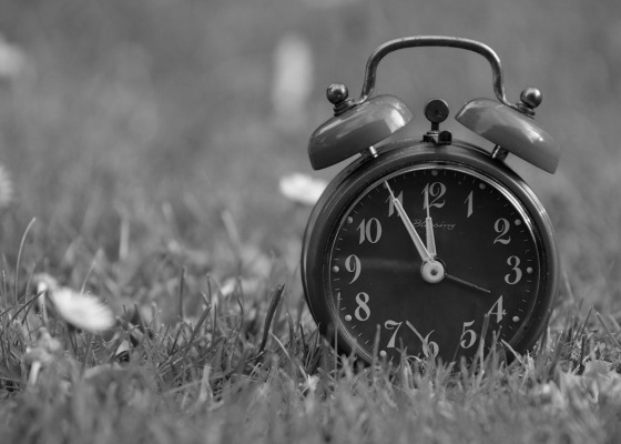 Alarm clock in a field black and white