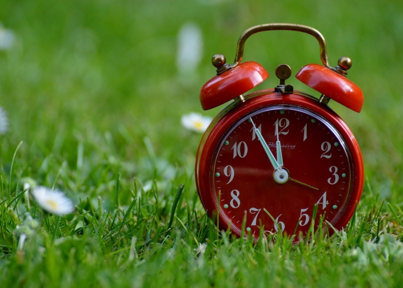A red alarm clock standing on grass with daisies