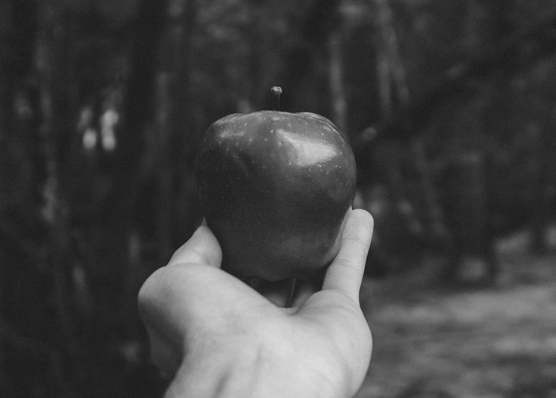 Hand holding apple black and white
