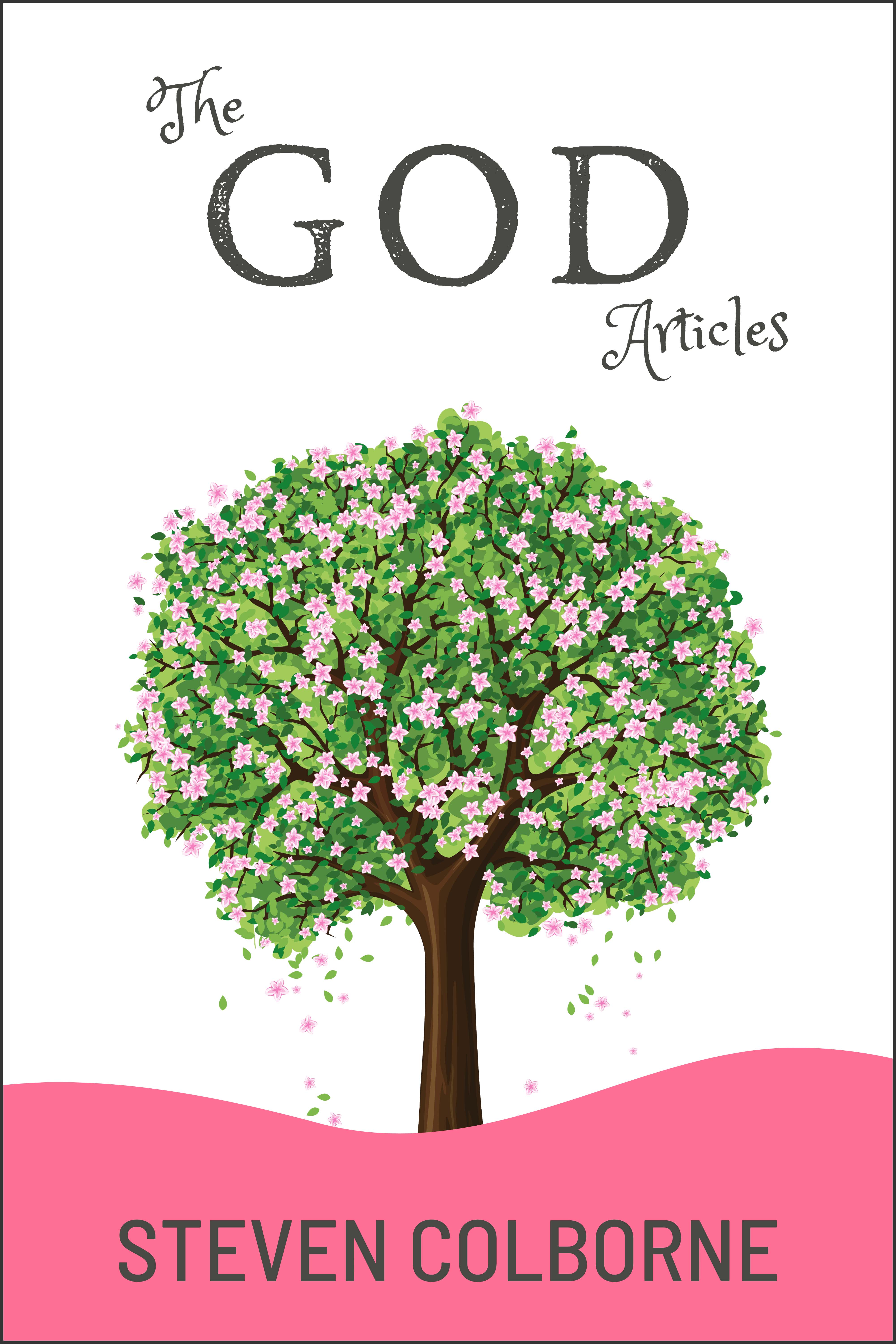 The God Articles by Steven Colborne