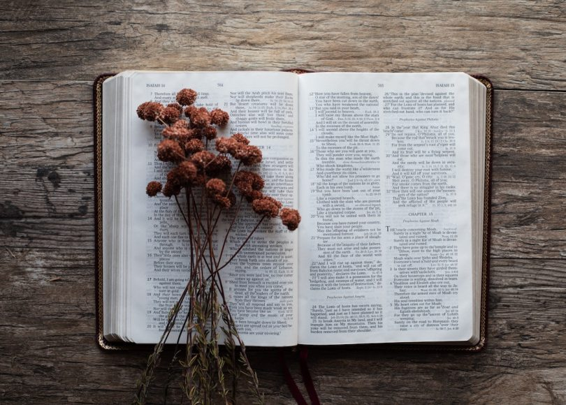 A Bible and dried flowers on a wooden table