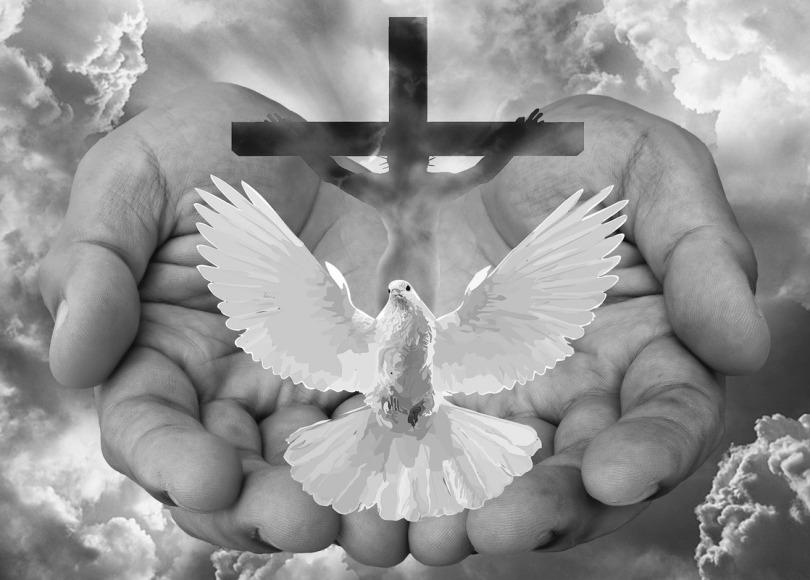 Trinity black and white