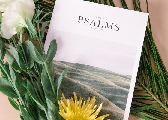 Psalms in magazine format