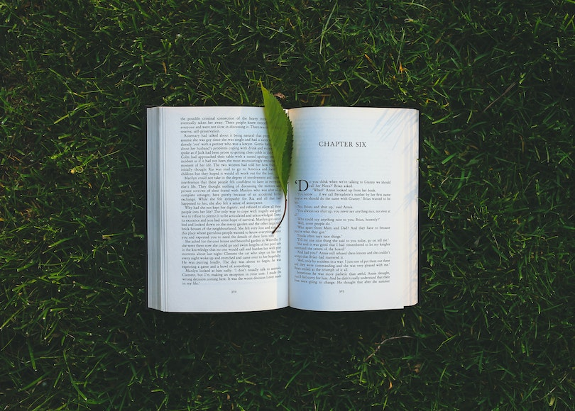 Open book on grass